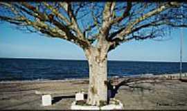 Praia do Laranjal - Imagem da Orla da Praia do Laranjal-Foto:Darlan Corral