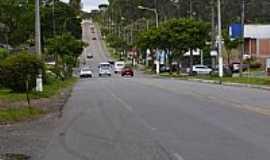 Ana Rech - Ana Rech-RS-Avenida Rio Branco-Foto:Walter Pedron Mosche…