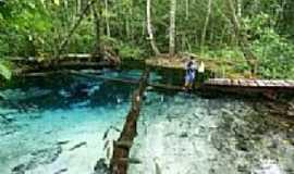 Vila de Bom Jardim - Fazenda Recanto Ecológico Lagoa Azul em Vila de Bom Jardim-MT