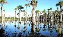 Vila de Bom Jardim - Lagoa das Araras em Vila de Bom Jardim-MT