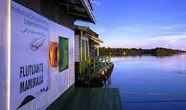 Mamirauá - Mamirauá-AM-Instituto de Desenvolvimento sustentável-Flutuante-Foto:www.redetiradentes.com.br
