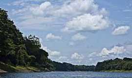 Mamirauá - Rio na Reserva Mamirauá-AM-Foto:Gabriel Prehn Britto