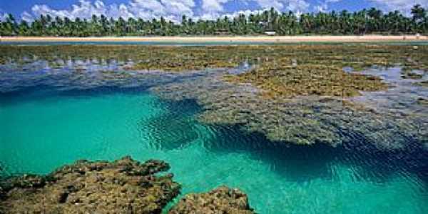 Taipús de Fora-BA-Belezas da praia-Foto:www.praiabelladetaipus.com.br