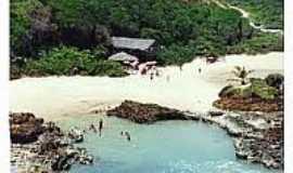 Praia de Tambaba - Naturalista - Tambaba-Foto:fabianovidal.