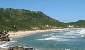 Praia do Pinho - Naturalista - Praia do Pinho-Foto:fatonovo.