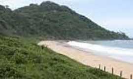 Praia do Pinho - Naturalista -  Praia do Pinho-Foto:planejeseuferiado.