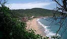 Praia do Pinho - Naturalista - Vista da Praia-Foto:turisnat.