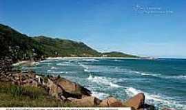Praia da Galheta  - Naturalista - Praia da Galheta-Foto:litoraldesantacatarina.