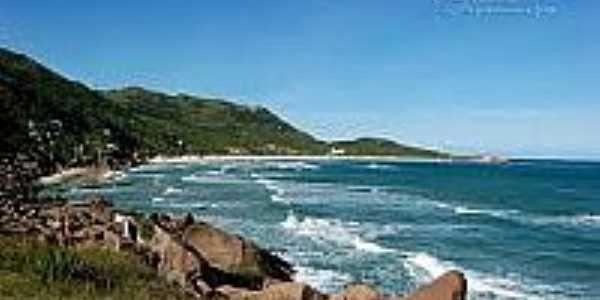 Praia da Galheta-Foto:litoraldesantacatarina.