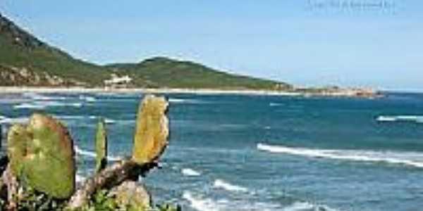Vista da praia-Foto:litoraldesantacatarina.