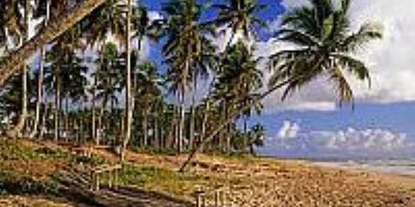 Jangada rústica na Praia do Cassange-Foto:alexuchoa.
