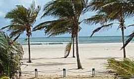 Praia do Presídio  - Coqueiros na Praia do Presídio-Foto:flogao.com.