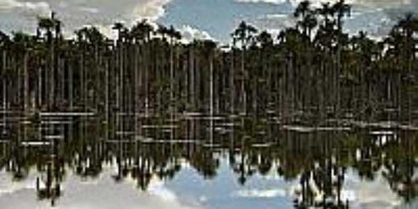 Lagoa das Araras em Araras-MT-Foto:flickr.