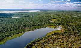 Ilha do Bananal - Ilha do Bananal-TO-Rio Araguaia-Foto:www.portalnabocadopovo.com.br