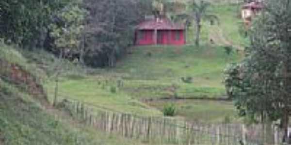 Macacos-MG-Bela imagem de Macacos-Foto:oquevivipelomundo.