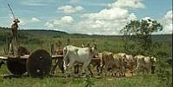 Povoado São Miguel-BA-Carro de Boi-Tradição preservada-Foto:https://www.facebook.com