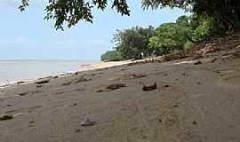 Ilha de Cotijuba - Ilha de Cotijuba-PA-Praia do Ilha-Foto:Rosemary Hoff