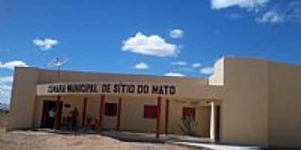 Sítio do Mato-BA-Câmara Municipal-Foto:amarildo Varela