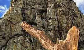 Sítio do Meio - O Tronco e a Rocha em Sítio do Meio-BA-Foto:heberteguedes