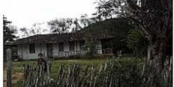 Fazenda Caritá em Sítio do Quinto-BA-Foto:Adriano Carvalho