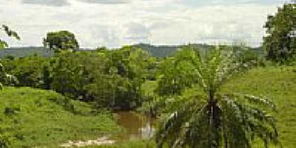 Rio Itajiba e mata ciliar. por Quinta da Luz