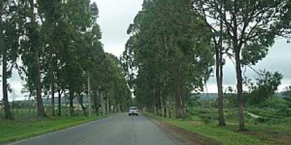 Tapiramutá-BA-Entrada da cidade-Foto:Welle beu