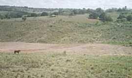 Limoeiro de Anadia - Limoeiro de An�dia-AL-Campos da �rea rural-Foto:HenriqueNordestenoAt�