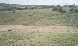 Limoeiro de Anadia - Limoeiro de Anádia-AL-Campos da área rural-Foto:HenriqueNordestenoAt…