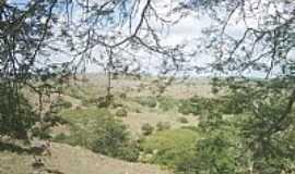 Limoeiro de Anadia - Limoeiro de An�dia-AL-Campos e montanhas na �rea rural-Foto:HenriqueNordestenoAt�