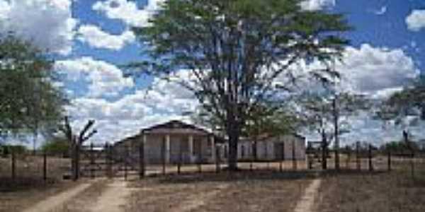 Área rural-Foto:Rafael Olimpio