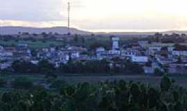 Tucano - Tucano por everton.miranda@live