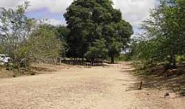 Uauá - Uauá-BA-Riacho Caititú Povoado Caratacá-Foto:Adriano_Rodrigo