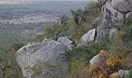 Valente - Valente-BA-Face sul da Serra do Pintado-Foto:orge LN