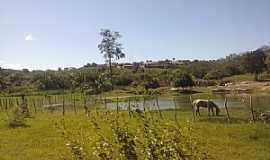 Altaneira - Altaneira-CE-Área rural-Foto:John Deywid de Brito Camilo