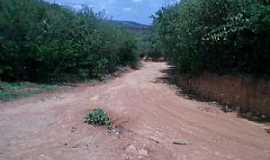 Altaneira - Altaneira-CE-Estrada de acesso-Foto:John Deywid de Brito Camilo