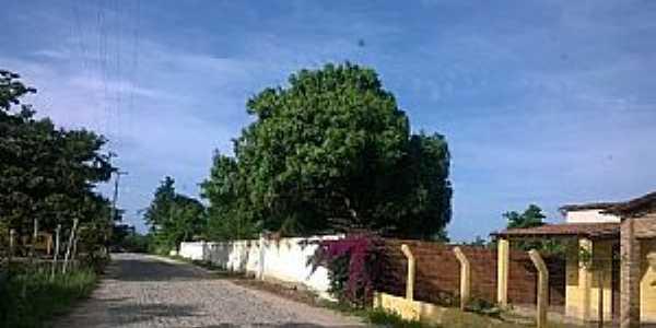 Aningás-CE-Rua do Distrito-Foto:SilaS Lima