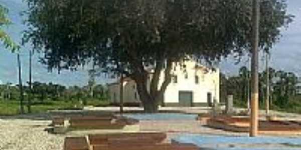 Praça e a eterna Oiticica em Aracatiara-Foto:CRSS3