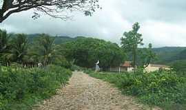 Aratuba - Aratuba-CE-Distrito de Marés, um oásis verde no setão, no sopé do Maçiço de Baturité-Foto:Josue Marinho