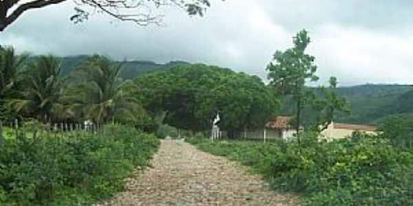 Aratuba-CE-Distrito de Marés, um oásis verde no setão, no sopé do Maçiço de Baturité-Foto:Josue Marinho