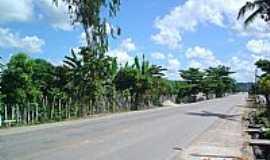 Matriz de Camaragibe - Rodovia AL-101 em Matriz de Camaragibe-Foto:ivanaldo ( babo)