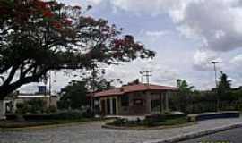 Minador do Negrão - Minador do Negrão-AL-Praça Tereza Araújo de Barros-Foto:Sergio Falcetti