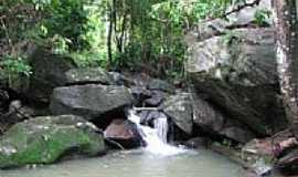 Murici - Serra do Ouro-Foto:jose mendes