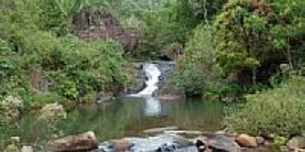 Córrego na Zona da Mata em Murici-AL-Foto:jose mendes