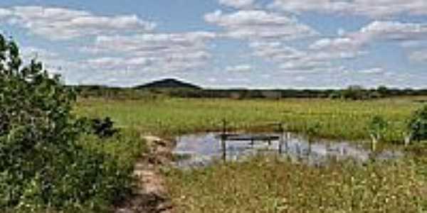 Lagoa-Foto:Krewinkel-Terto de A…