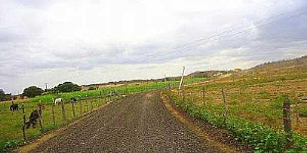 Cruzeirinho-CE-Estrada do Distrito-Foto:Nildomar