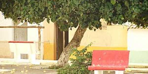 Gameleira de São Sebastião-CE-Pracinha do Distrito-Foto:cariricangaco.