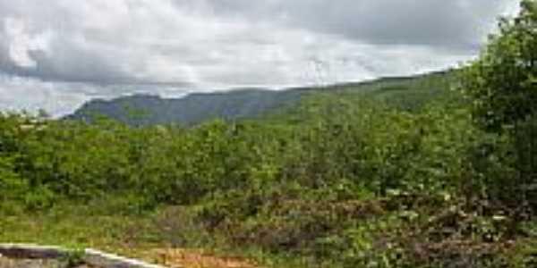 Estrada para General Tibúrcio-Foto:canta galo