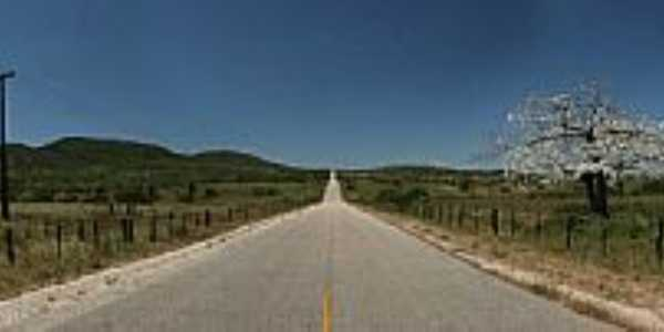 P�o de A�ucar-AL-Linda estrada saindo da cidade-FotoCharles Northrup