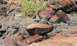 Ic� - Ic�-CE-Rochas no leito do Rio Capim Pubo-Foto:helio freire da silva