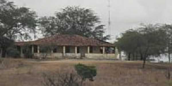 Fazenda Alto Alegre-Foto:xicoluiz